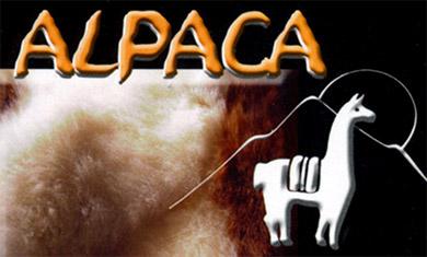 alpaca exotic imports tahoe logo